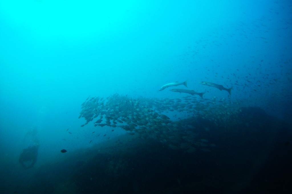 SE Asia 2012 0221 Thailand 2012